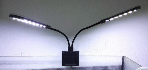Doppellampe LED